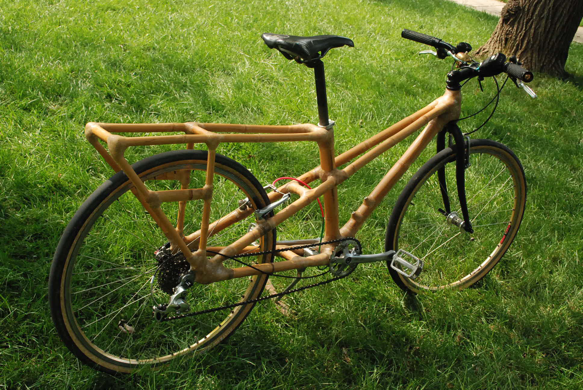 bamboo bike rear view photo