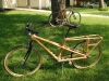 Bamboo Cargo Bike with bamboo bike
