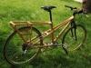 bamboo bike rear view photo
